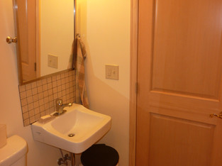 Hlaf Bath Sink and Overhead Light