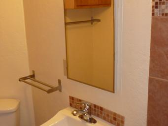 Bath Sink and Mirror