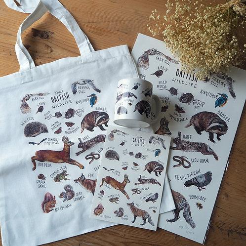 British Wildlife gift bundle