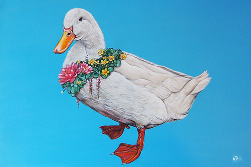 Do you like me now? Duck print