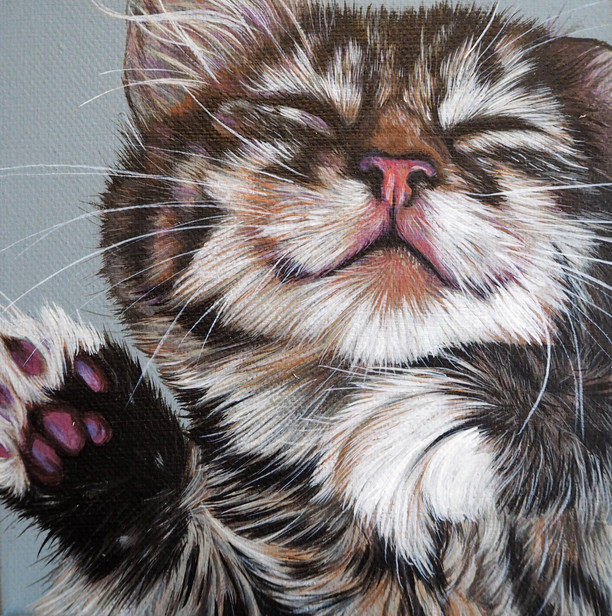 Mini canvas portrait of kitten with neutral grey background