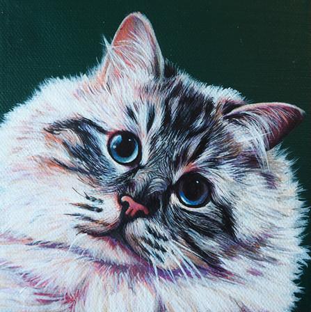 Mini portrait on canvas with dark green background