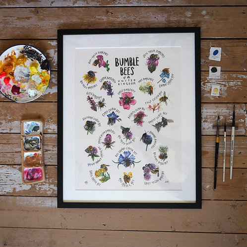 Bumble bees of the UK - original painting