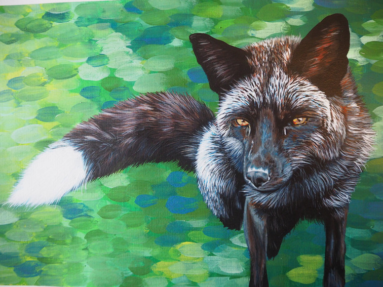 A4 portrait with mixed green background - fox rescued from fur farm