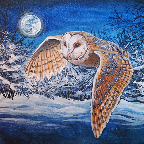 Flying Barn Owl - Fine Art Print
