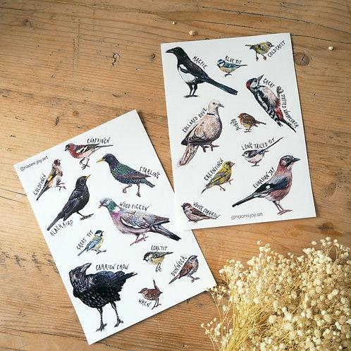 Garden bird stickers sheets - A5