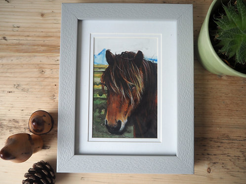 Icelandic Pony - original painting