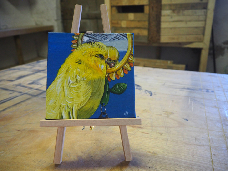Mini canvas with budgie