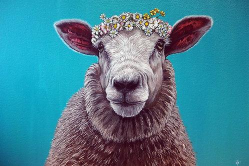 Do you like me now? Sheep print