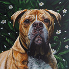 """12 x 12"""" canvas of beloved pet from DSLR photograph with leafy background"""