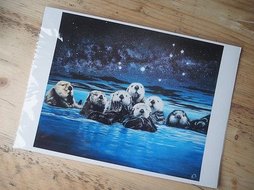 Seven sisters otter print