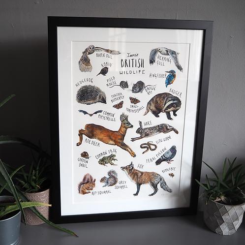 Iconic British Wildlife - original painting