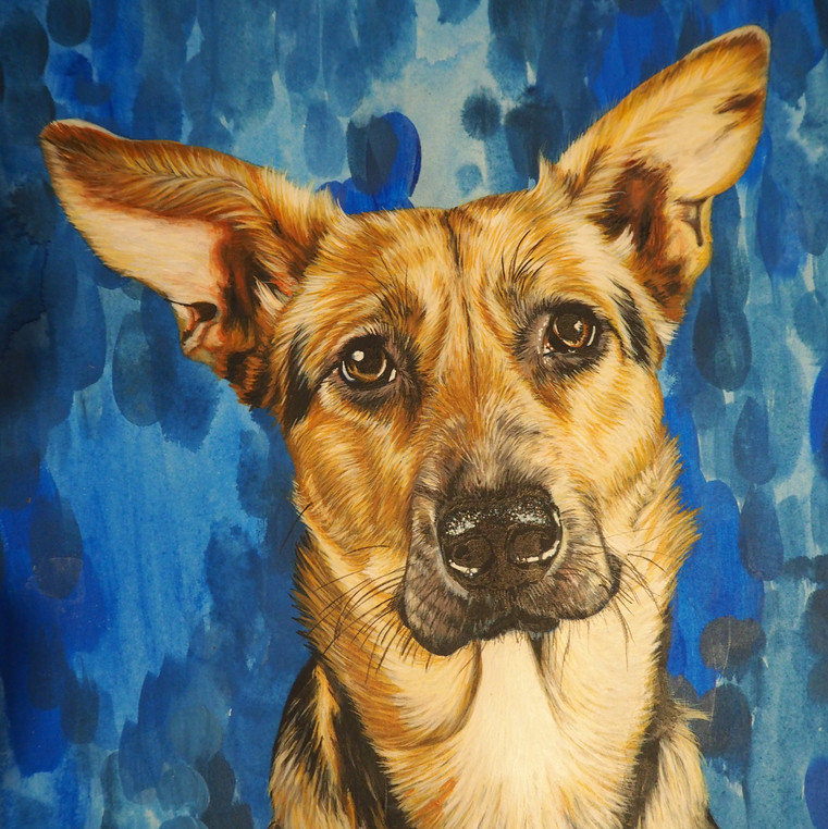 A4 rescue portrait with blue toned background on paper
