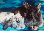 Reggie and Padme - rescue rabbits on A3 paper