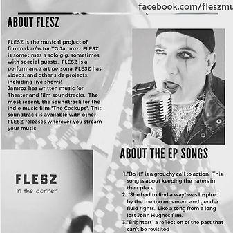 The #FLESZ #onesheet #artist #musician #
