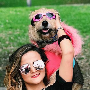 gafas para perro, gato, mascota