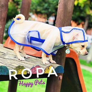 ropa para mascotas, perros, gatos