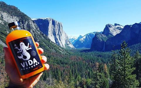 Yosemite, we ❤ you__#vidakombucha #organ