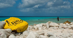 Shore-Diving-Bonaire-enter.jpg