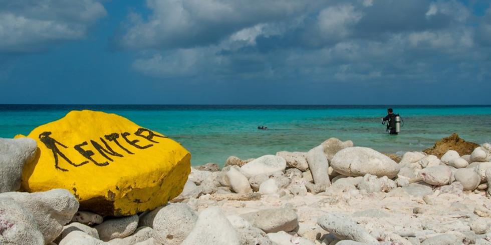 Séjour Plongée à Bonaire (Antilles Néerlandaises)
