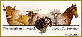 The Amerian Livestock Breed Conservancy