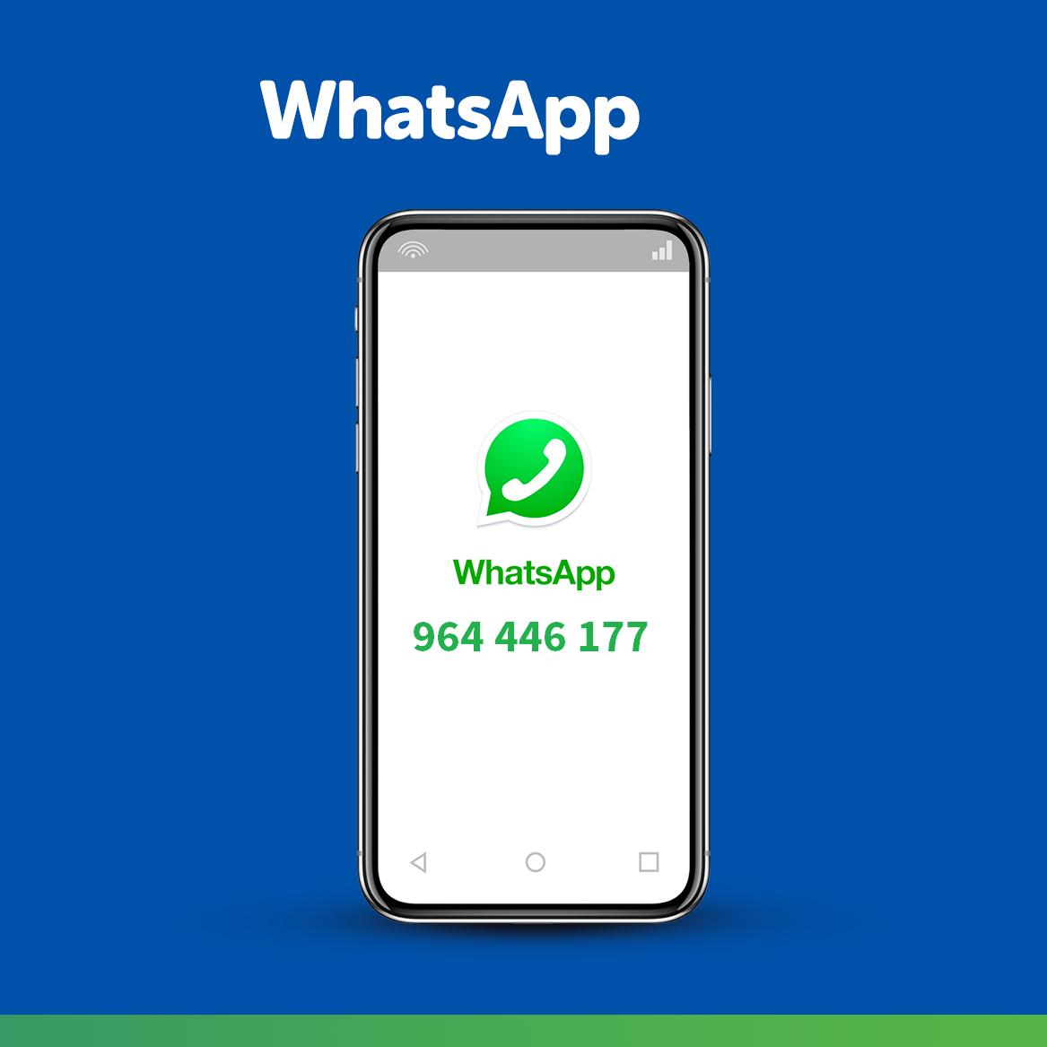 WhatsApp pedidos