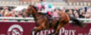 Arc 2017_Enable LK.jpg