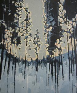 a forest   2005  73x60 - Acrylic
