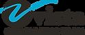2. Vista Consulting logo.png