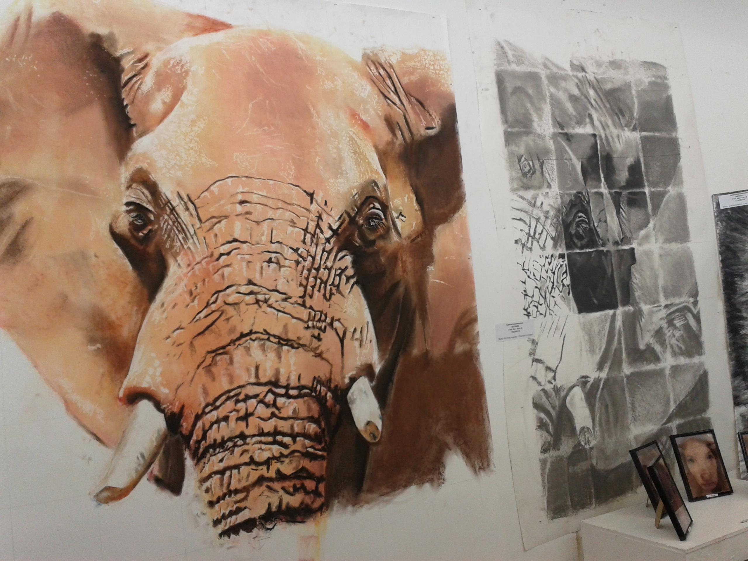 Elephant Sketches (2014)