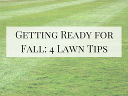 Getting Ready for Fall: 4 Lawn Tips