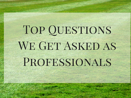Top Questions We Get Asked as Professionals