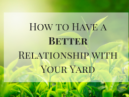How to Have a Better Relationship with Your Yard