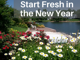 Start Fresh in the New Year