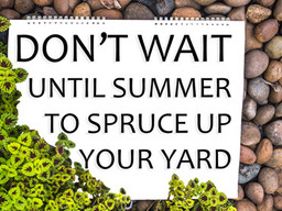 Don't Wait for Summertime to Spruce up Your Yard