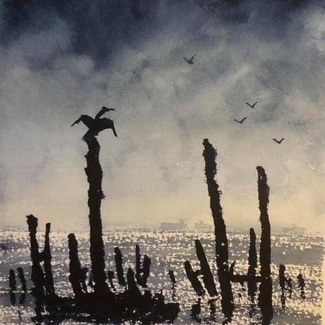 158 - Cormorant