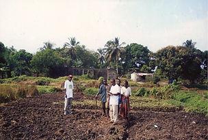 farm-1536x1035.jpg