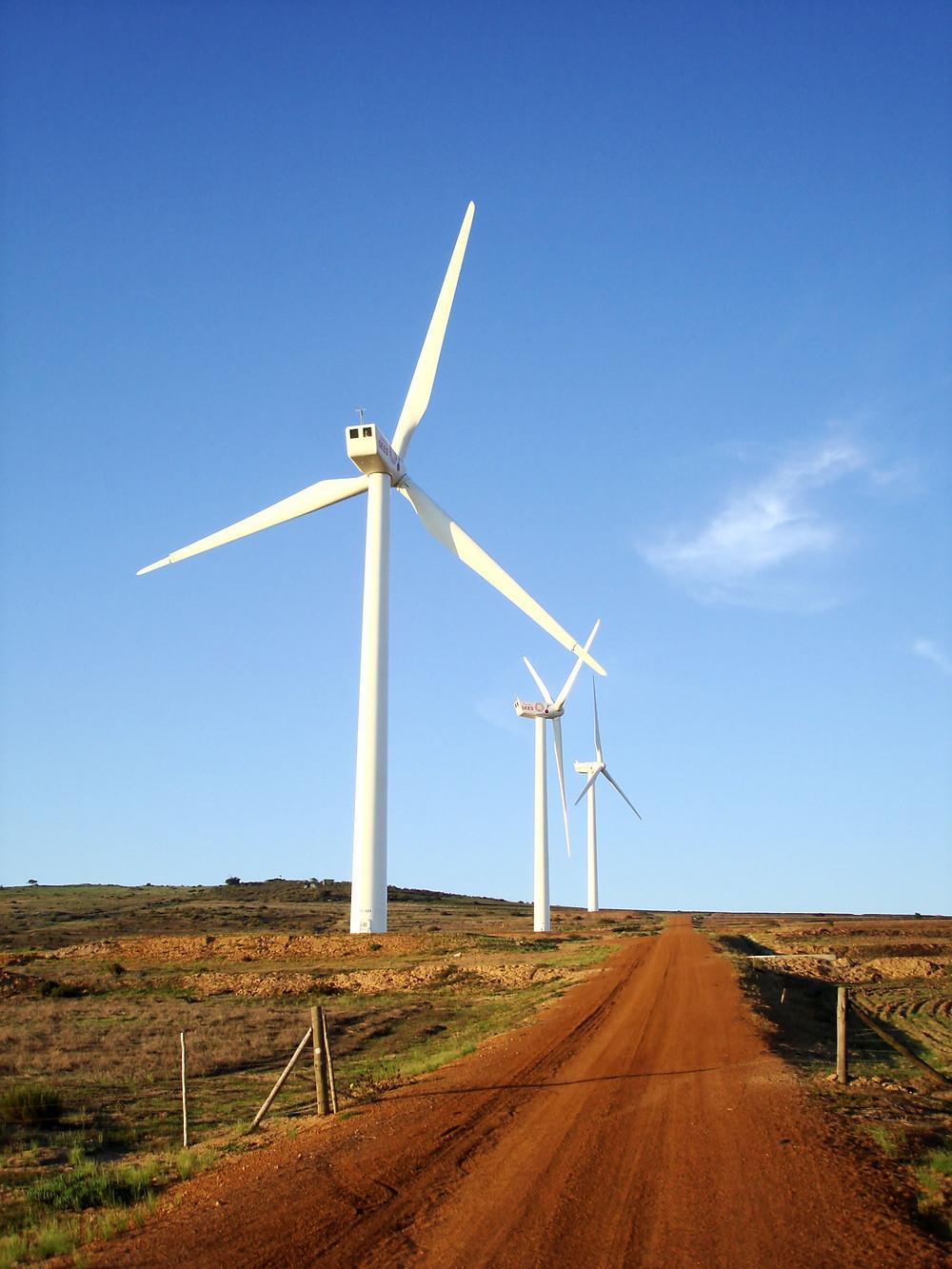 Wind farm africa