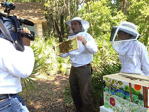 Greg Gullberg interacting with bees.
