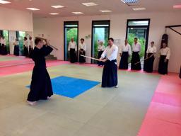 Cours de bases de Kendo avec Frédéri Doyon 5e Dan
