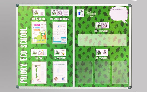 Eco School poster display design