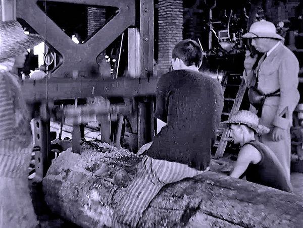 Prisoners sawing logs into lumber, Devil