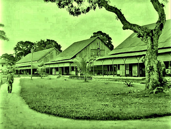 buildings or shops in French Guiana - 19