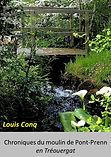 Page titre Pont Prenn _01.jpg