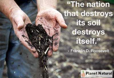 Reclaiming Our Soil