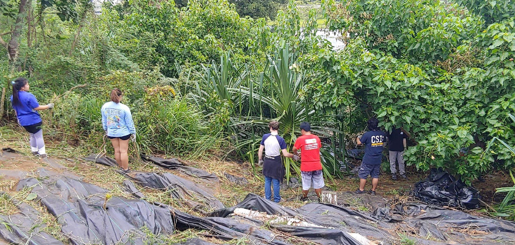 The Senior Class at Kawai Nui Marsh 7