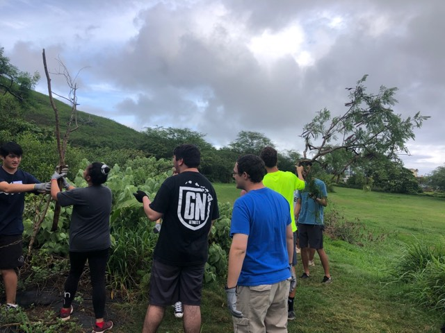 The Senior Class at Kawai Nui Marsh 3