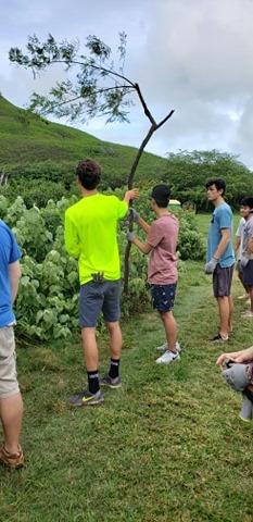 The Senior Class at Kawai Nui Marsh 16