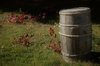 Barrel and Leaves