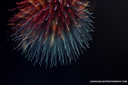 Focus Pull Firework (2)